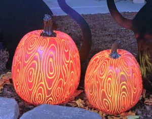 These are my new 15-inch Illuminated Indoor/Outdoor Faux Bois Pumpkins. I love the raised pattern, and it looks great in both bone white and orange.