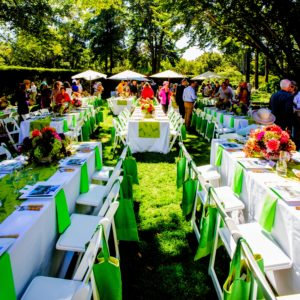The luncheon was held on the Second Lawn - such a beautiful day for the event. (Photo by ©Philippe Cheng)