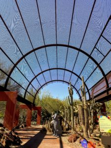 This is the Sybil B. Harrington Cactus Gallery at the Desert Botanical Garden. The massive structures display and protect the cactus and succulents gathered from around the world while allowing them ample room to grow.