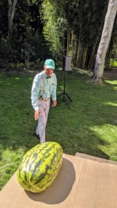 Here is the photo I took - the watermelon is a Carolina Cross variety. There were two on the stage.