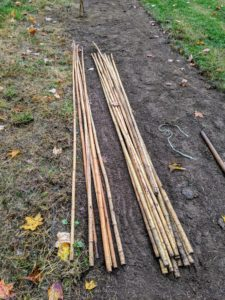 These bamboo stakes always come in handy. One six to seven foot stake is planted with each tree to give it added support as it develops.