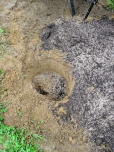 Then he sprinkles a generous amount of fertilizer on the compost and on the existing soil. The elements are mixed together and some of it is placed into the hole before the tree is planted.