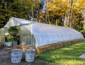 This greenhouse is covered with two rolls – one is a heavy-duty, woven polyethylene that features an anti-condensate additive to reduce moisture buildup and dripping. The other contains UV additives that allow the fabric to maintain its strength. It also has manual roll-up curtains on both sides for ventilation purposes.