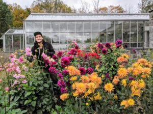 Here's Ryan cutting as many dahlias as possible before the storm - the grey clouds above look very ominous.