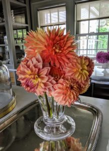Dahlias come in almost every color except true blue. Here is an arrangement of pink, salmon, and peach-colored dahlias.