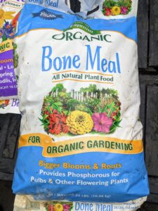Bone meal fertilizer is a meal or powder made from ground-up animal bones. It is used to increase phosphorus in the garden, which is essential for plants to flower.