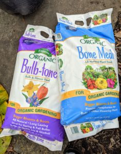 Always be sure to add the proper bulb food to the bed. It should be a balanced fertilizer that has a good amount of phosphorous. Fertilizing spring-blooming bulbs also helps them fight off diseases and pests. Ryan sprinkles the beds with a generous and even layer of Bulb-tone and Bone Meal.