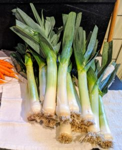Leeks are sturdy, versatile, and flavorful vegetables. A traditional ingredient in French cuisine, the leek adds not only onion flavor to food but also a hint of garlic. Leeks are low in calories and full of nutrients – great for soups, stews, grain dishes, and even omelets.