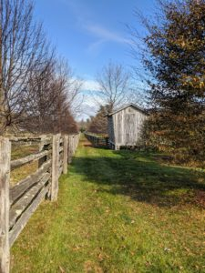 My corn crib is original to the farm, and is one of the most photographed outbuildings on the property. It is located at one end of my party lawn next to one of my horse paddocks and this long allee of lindens.