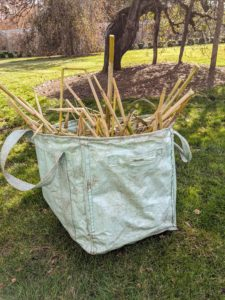 Any discarded stalks are brought to the compost pile using my sturdy extra-large Multipurpose Garden Totes from QVC. We use these bags everywhere around the farm - they are so useful for so many tasks.
