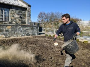 Ryan spreads a good coating of fertilizer on the bed. The best garlic plant fertilizer will be high in nitrogen.