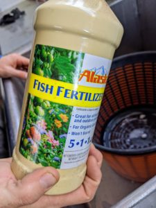 Ryan then pours fish emulsion into the same container. This is an organic garden fertilizer that's made from whole fish or parts of fish. It's easy to find at garden centers or wherever gardening supplies and fertilizers are sold.