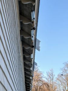 Here, one can see the melting sheets of ice and snow hanging off the roof of my carport. This is where I hang feeders for all the birds that visit the farm on a daily basis - about 125 different species.