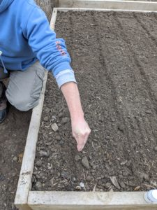 The furrows don't have to be deep. In general, seeds should be planted at a depth of two times the width, or diameter, of the seed. A seed that's about 1/16-of-an-inch thick should be planted an eighth-of-an-inch deep.