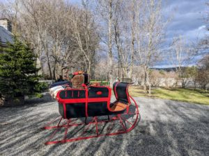 My big sleigh is taken out of storage, dusted, and placed outside my Summer House for photos with Santa.
