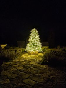 And outside, my beautiful Christmas tree with 1000 lights. Everyone had such a great time at the party. Happy holidays to all of you.