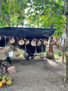 Discarded coconut shells are made into beautiful bowls and other natural products and sold at these roadside stands.