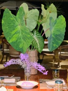 At night, we enjoyed dinner back at Los Elementos. Jude and our friend, Ari, who also accompanied us on the trip, made these arrangements for the table. In my next blog, I will share more photos of our holiday in Costa Rica.