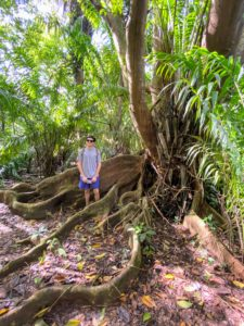 Here's Ari next to the buttress roots of this huge tree. In Costa Rica, these roots line the forest floor.
