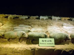 The tombs were built at the beginning of the Han Dynasty. Resources were less, so the terracotta warriors are smaller in size than the ones seen in my last blog at the Terra-Cotta Museum displaying figures from the Qin Dynasty.