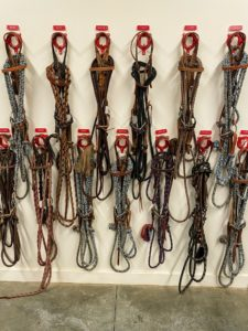 On this wall are the bridles and harnesses.