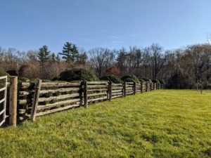 The pasture fencing is 100-year-old white spruce railings from Canada dropped between cedar uprights that were pounded into the ground. I decided the fencing behind the boxwood on both sides would be moved 10-feet back to accommodate the growing shrubs.