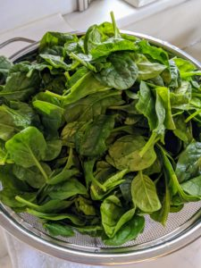 I also used lots of spinach - my dogs love spinach.