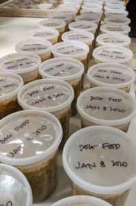 These containers are also marked with the contents and the date it was prepared.