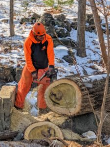 The process of cutting down this large trunk took several hours, but the crew worked safely and efficiently.