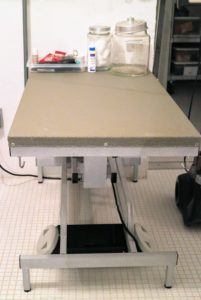 On the other side of the room, I also have a hydraulic grooming table for both the dogs and the cats. This one has a durable rubber surface, so the animals don't slip while standing.