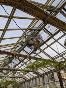 The structure is filled with big windows, which can be programmed to open for ventilation or cooling when needed. The greenhouse is also outfitted with fans to circulate the air during warmer months.