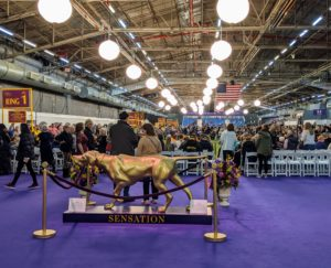 "Day competition is held at Manhattan's Pier 94. In the foreground is the statue of ""Sensation"" - a gorgeous Pointer and the Westminster Kennel Club mascot."
