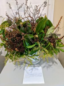 This arrangement includes Clethra anifolia, Hydrangea petiolaris, Forsythia intermedia, Rhododendron maximum, and Pieris japonica.