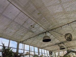 My large glass greenhouse is completely temperature and humidity-controlled. I also have these large shades across the entire glass ceiling that can be moved depending on lighting needs. The windows in this greenhouse are also mechanical and can open and close when necessary.