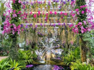 This Jeff Leatham installation was one of the first we saw. Hundreds of gorgeous vanda orchids and phalaenopsis hybrids surround the faceted mirrored fountain of a vanda flower.