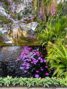 In the water below, floating vanda orchid flowers in the fountain reflecting pool.