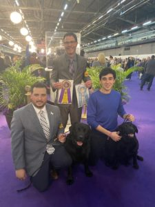 Afterward, Ari and Safari posed for a photo with handlers Fabian Negro and Tom Flaherty - and Memo, the Labrador Retriever that won Best of Breed.