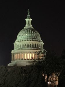 And here is one more photo of the Capitol Building at night.