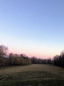 Here is a view of the morning sky as the sun rises over the large lower hayfield. I have four miles of carriage roads at the farm, so Liz does several loops.