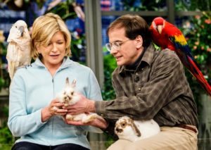 As well as keeping our homes tidy and comfortable, we must also remember to take special care of the health and safety of our pets. Here, petkeeper, Marc Morrone, joins me on set with some of his furred and feathered friends.