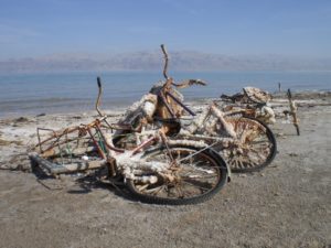 The effects of the salt corrosion on bycicles - what are they doing here anyway?