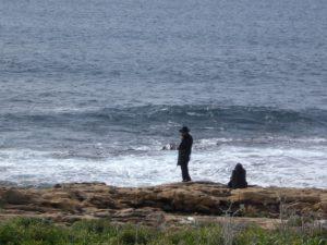 On the Sabbath, many orthodox Jews like to appreciate nature.