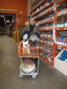 The Frenchies were very happy to ride through the enormous Home Depot in a shopping cart.  I bought some new hoses for the greenhouse and these really great round flat pans for geese feed.