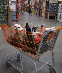 Shopping at The Home Depot was a great experience.