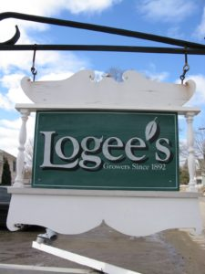 Here is the sign welcoming you to Logee's, with their creative use of the leaf as an apostrophe.