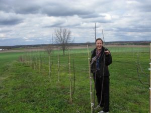 This is Andrea Mason - garden editor from TV - standing with an heirloom apple tree.