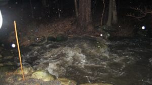 This raging brook is normally a gurgling little rivulet.