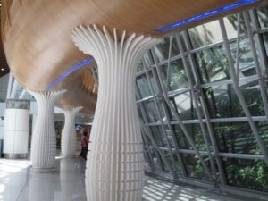 Majestic columns surrounding the airport rain forest emulate palm trees.
