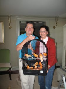 Carlos and Laura have successfully captured all the canaries for transport to another room.