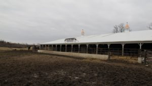 This is Harry Witteveen's new replacement barn for the one that burned down a few years back.  No horses were lost in the fire.